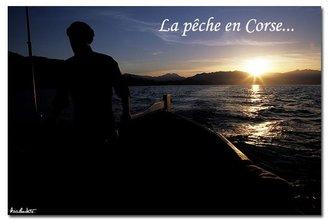 Site du CRPREM de Corse